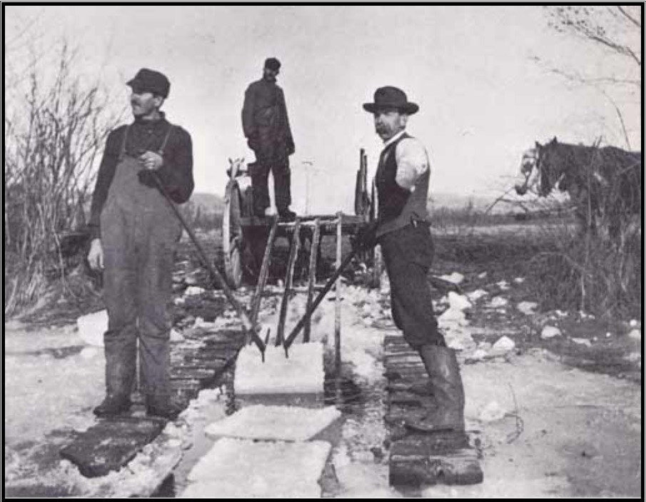 Photo of men harvesting ice from pond in New England